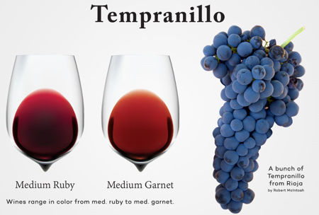 Picture for category Tempranillo